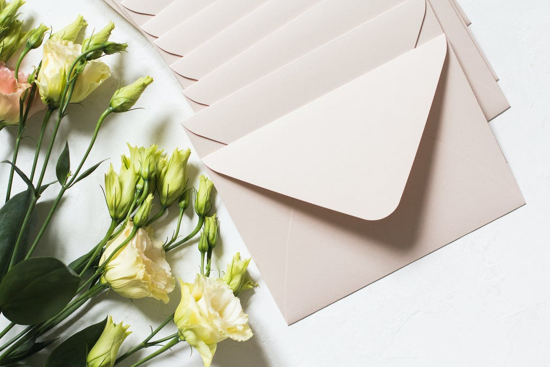 From above of rows of light beige envelopes by white and pink delicate roses on stems with dark green leaves in daylight
