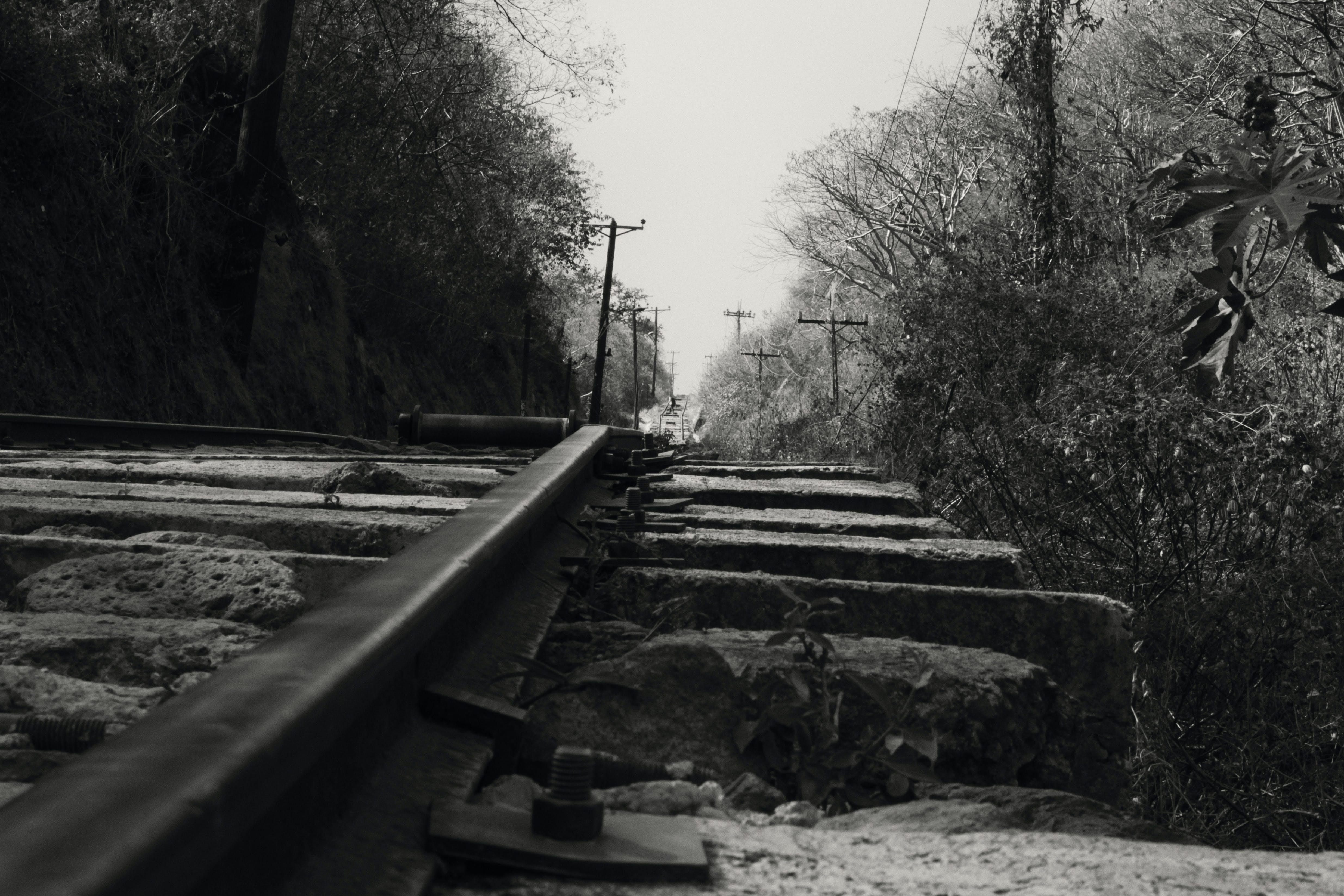 Free stock photo of black and white, path, paths, railway