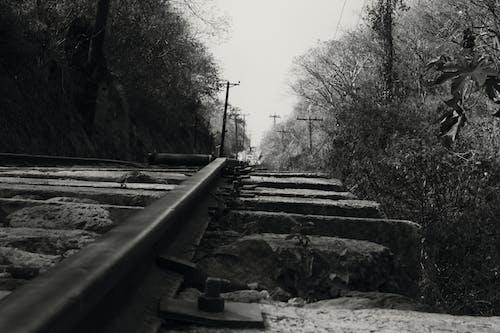 Foto stok gratis hitam dan putih, jalur, kereta api