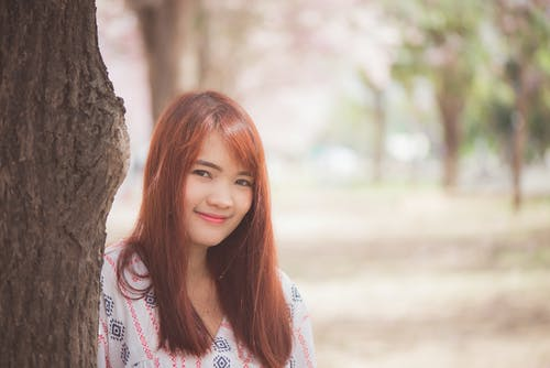 Kostenloses Stock Foto zu asiatisch, asien, ausflug, baum