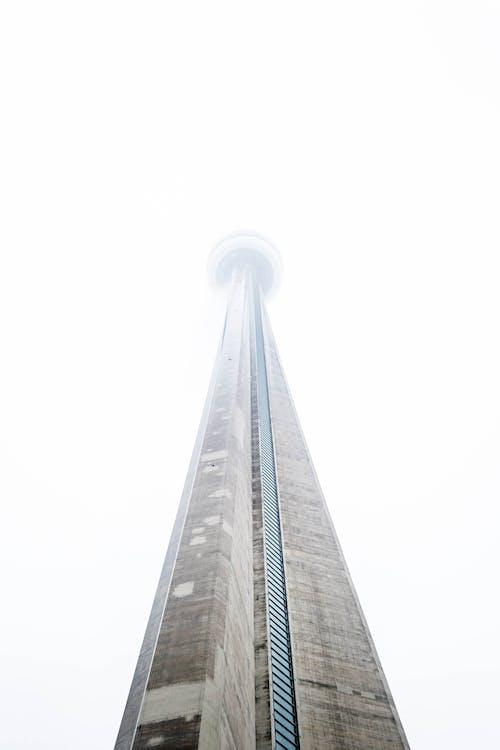 คลังภาพถ่ายฟรี ของ การถ่ายภาพมุมต่ำ, ซีเอ็นทาวเวอร์, ตึกระฟ้า