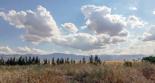 Free stock photo of blue sky, clouds, daylight, fields
