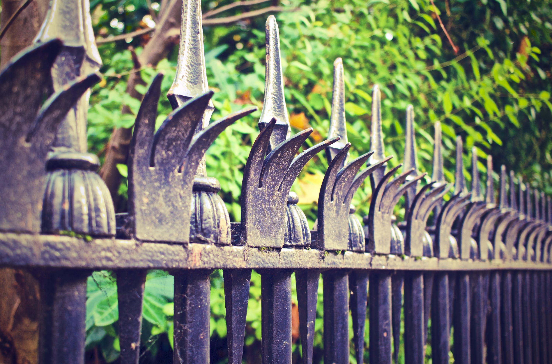 Free stock photo of fence