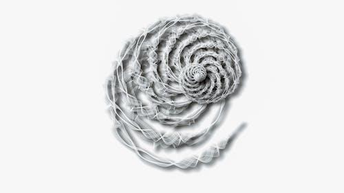 Ilmainen kuvapankkikuva tunnisteilla abstrakti, erilainen, kasvikunta, kaunis