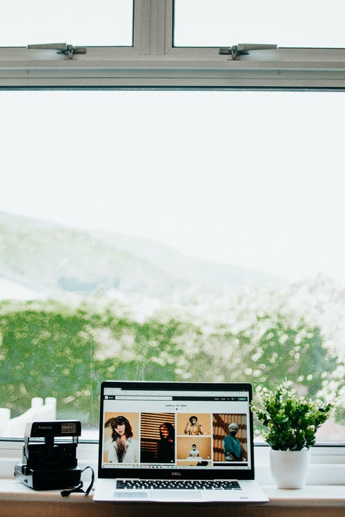 Instant photo camera and modern laptop and home potted plant standing on windowsill