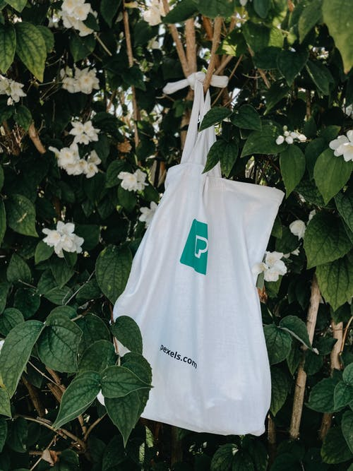 Cotton bag hanging on tree