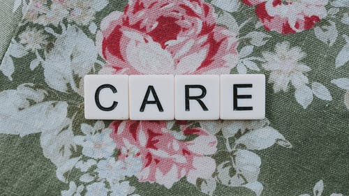 Free stock photo of care, caring, se soucier