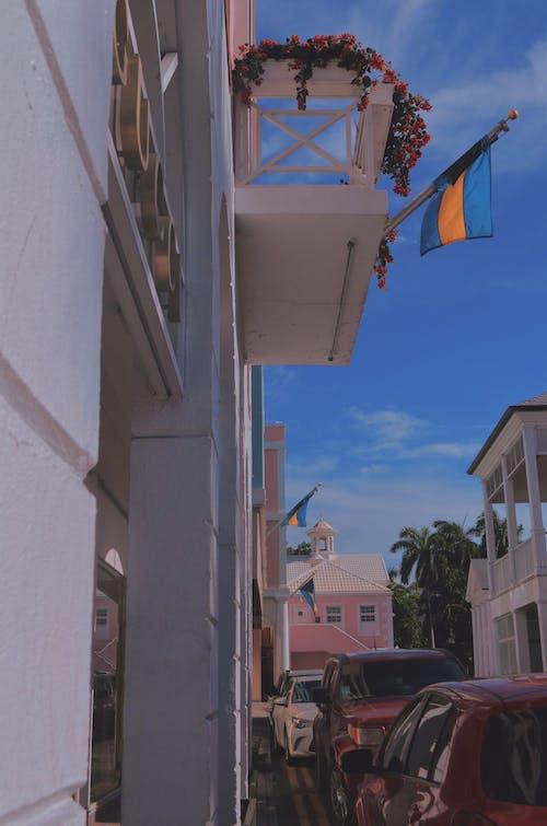Free stock photo of Bahamas, Bahamian food, caribbean, island