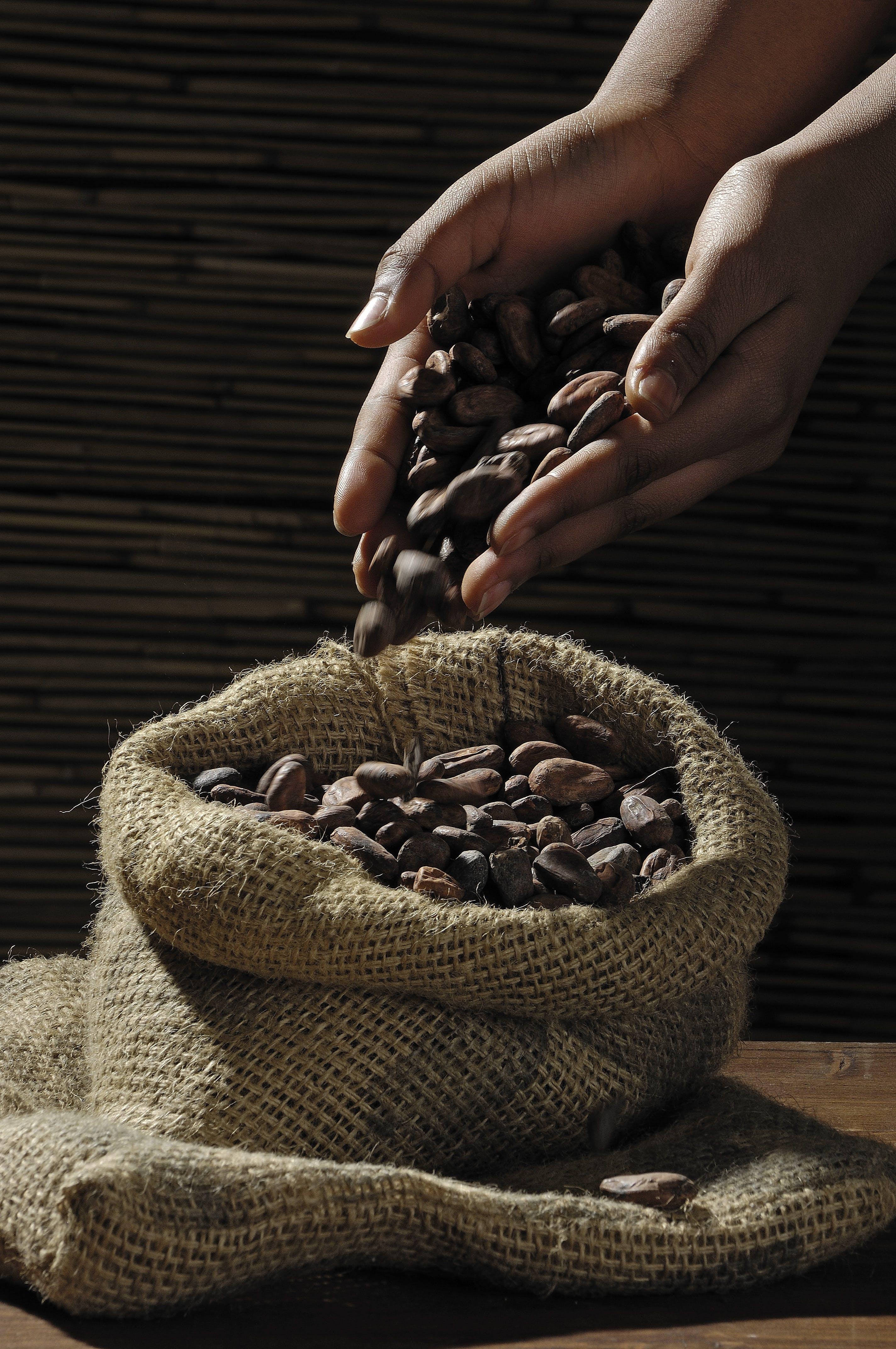 Kostenloses Stock Foto zu hände, kaffee, kaffeebohnen, koffein