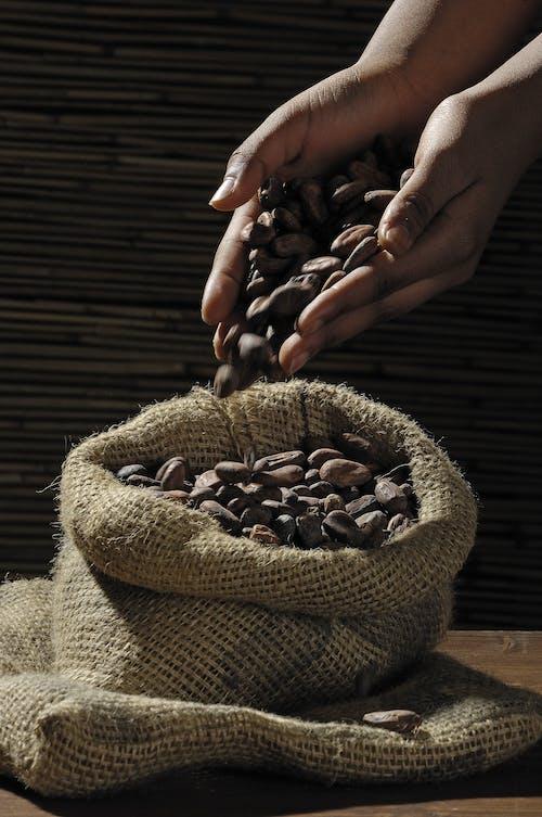 Gratis lagerfoto af hænder, kaffe, kaffebønner, koffein