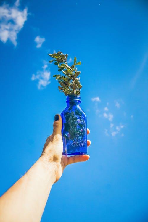 Gratis lagerfoto af årgang, blå, blå flaske, blå himmel