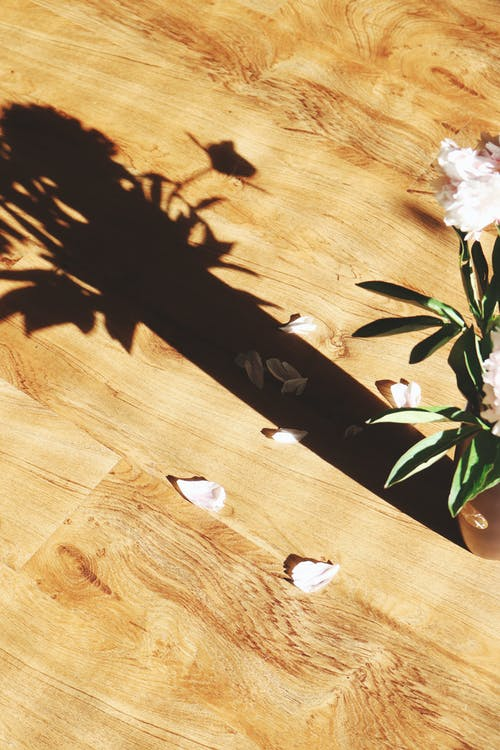 White Flowers on Brown Wooden Surface