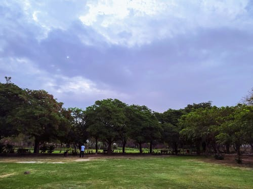 People Walking on Green Grass Field Surrounded by Green Trees Under White Clouds and Blue Sky