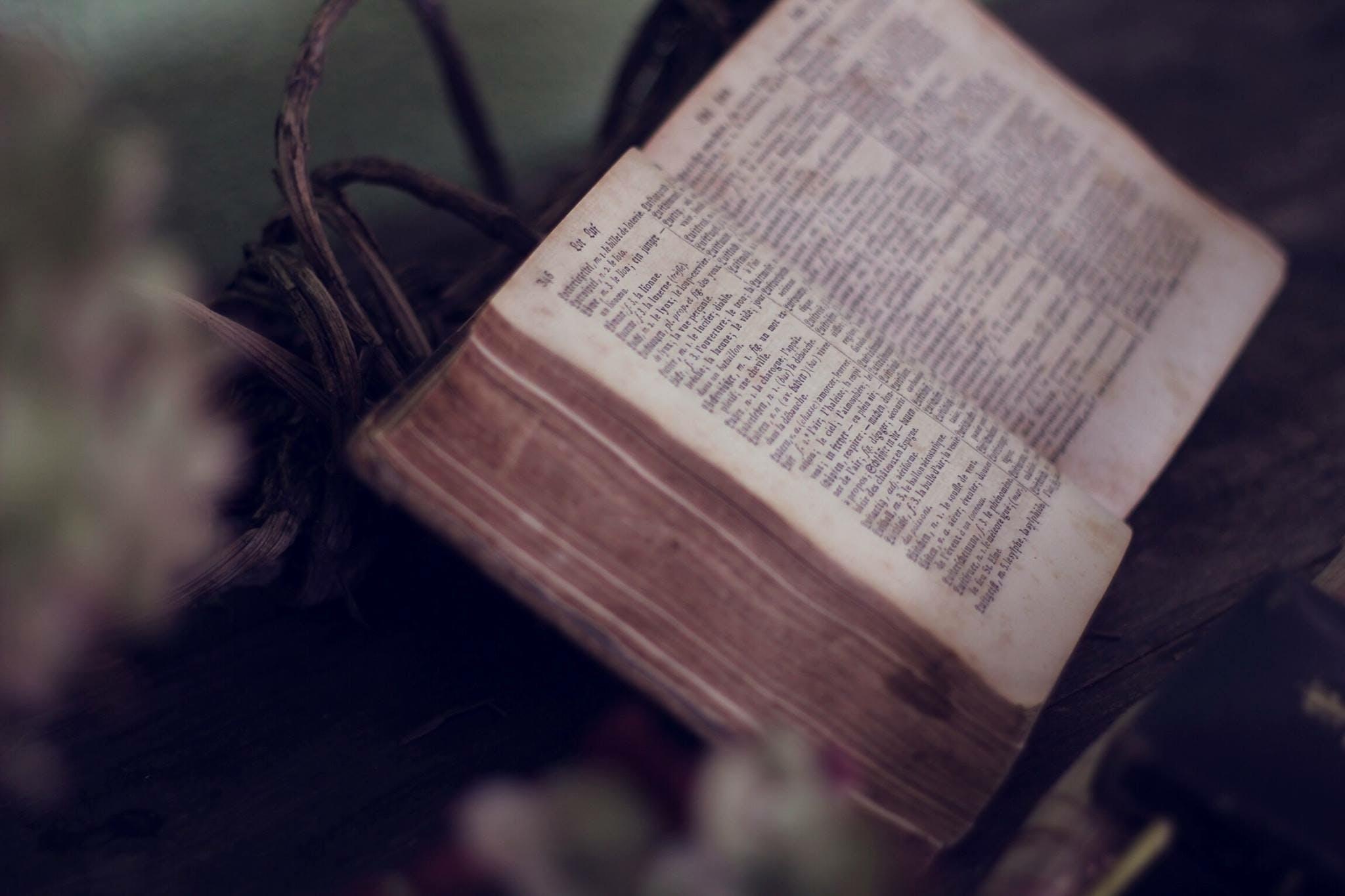 Free stock photo of religion, book, catholic, christianity