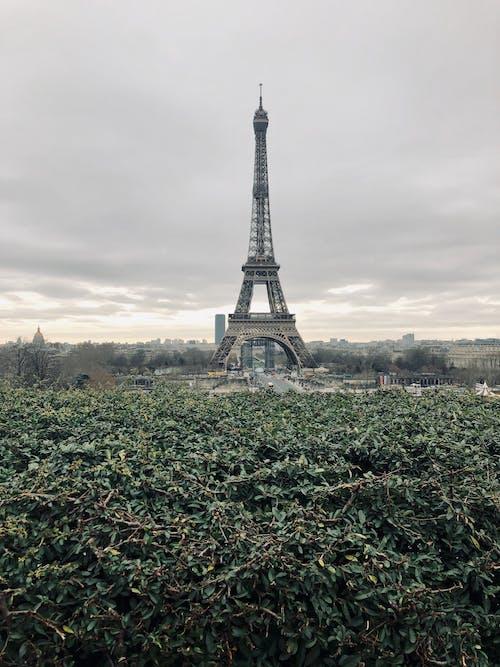 Eiffel Tower in Paris France under Cloudy Sky
