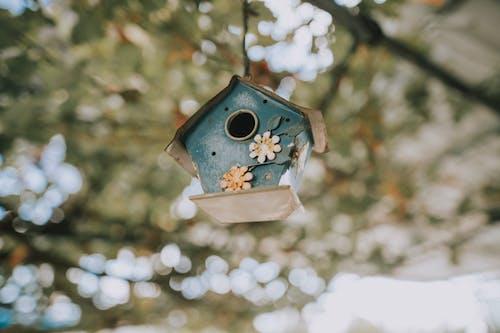 Brown Wooden Bird House in Tilt Shift Lens