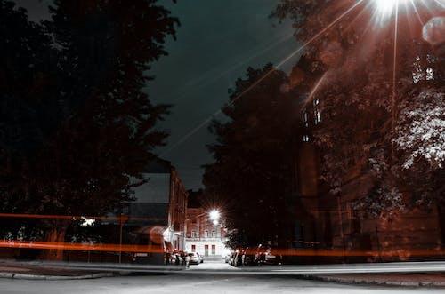 Free stock photo of cars, long exposure, Lviv, night