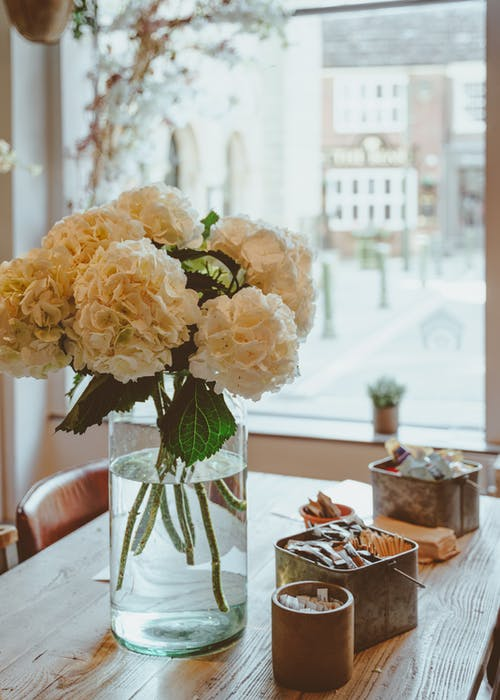 Elegant hydrangea white flowers in glass vase placing on wooden table near big window in light cafe on daytime