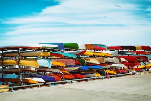 加拿大, 獨木舟, 皮艇 的 免费素材图片