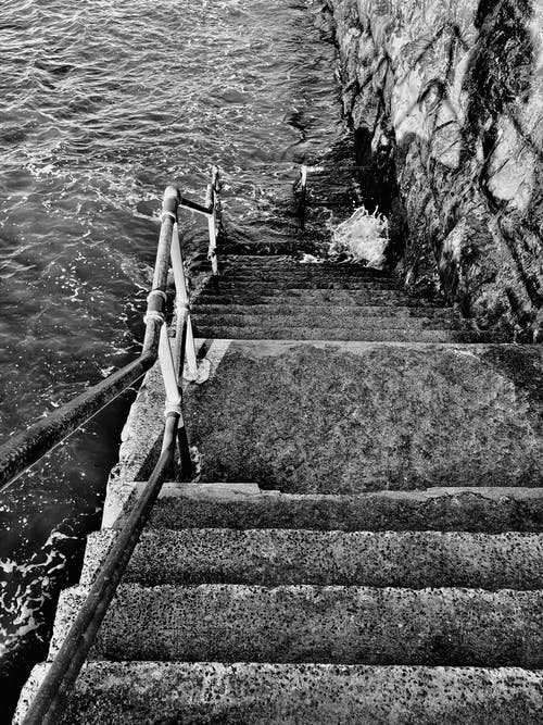 Základová fotografie zdarma na téma černobílá, cestování, chůze, dřevo