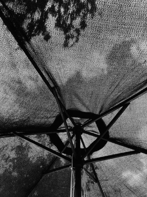 Základová fotografie zdarma na téma abstraktní, černobílá, design, déšť