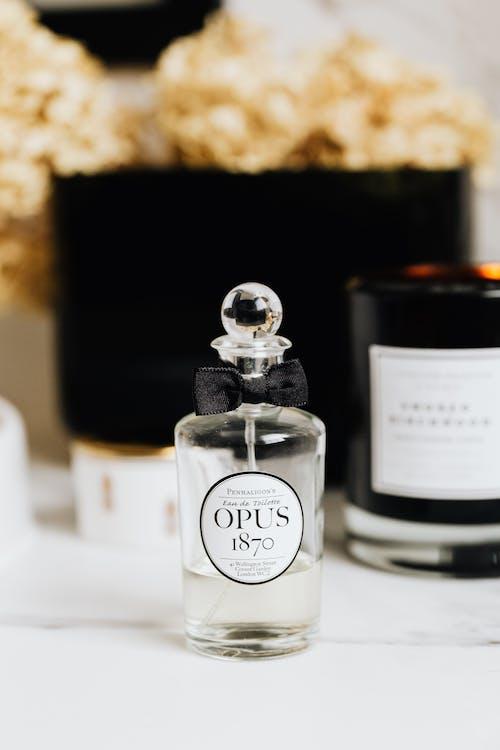 Foto profissional grátis de borrão, cheiro, cheiroso