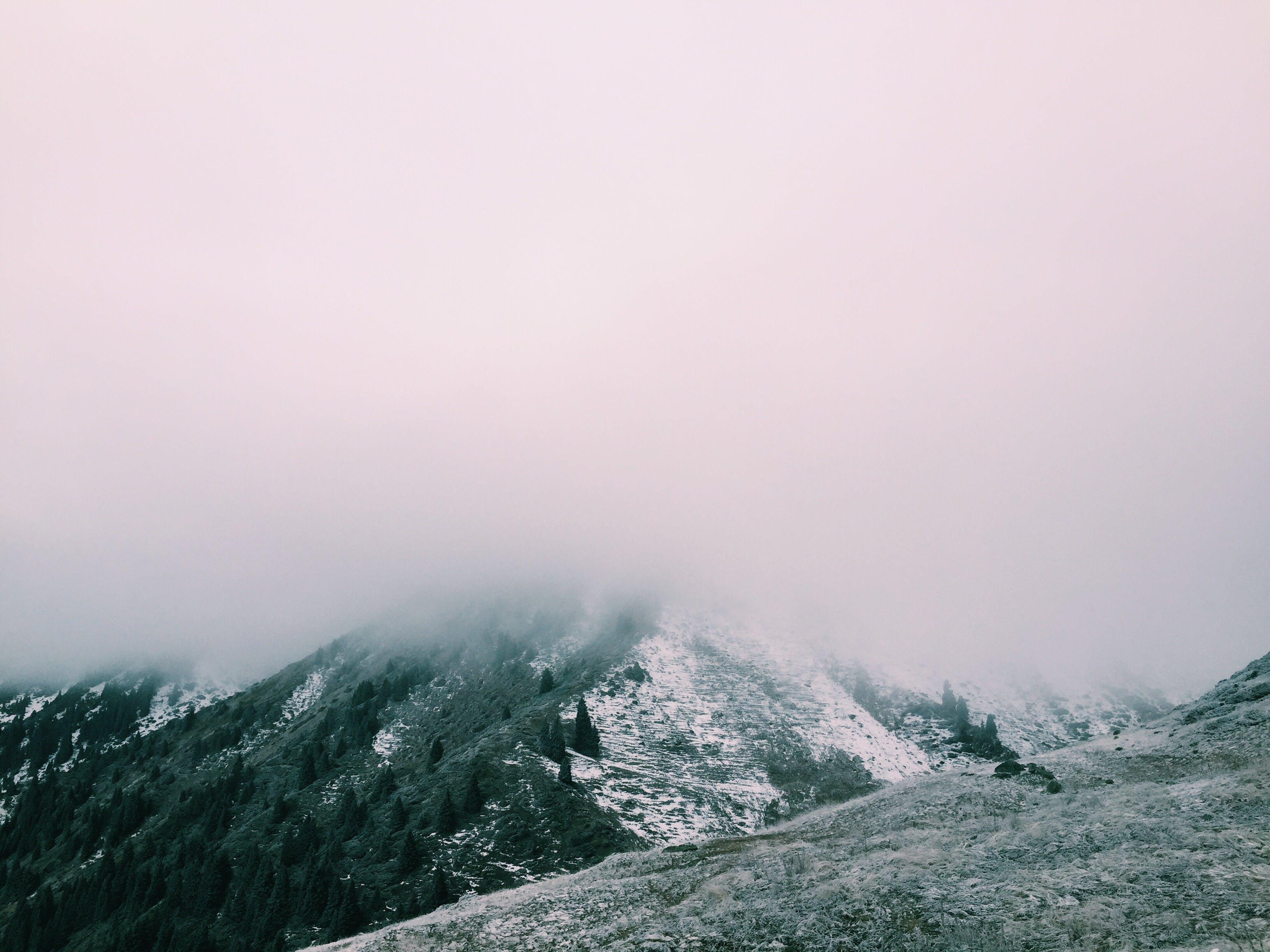 Free stock photo of mountains, nature, fog