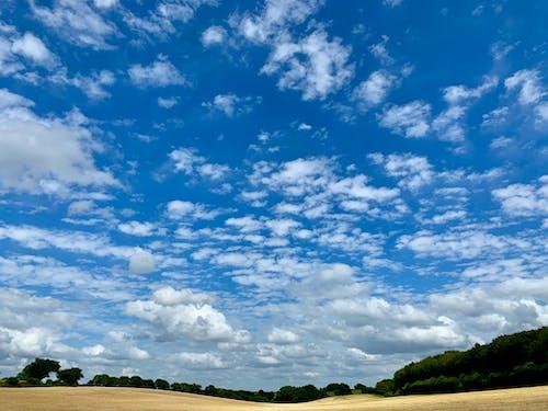Foto d'estoc gratuïta de camp anglès, camps, cel blau, medi ambient