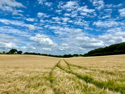 alanlar, bulutlar, çevre, ingilizce kırsal içeren Ücretsiz stok fotoğraf