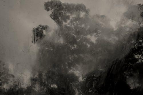 Free stock photo of fog, rain, window