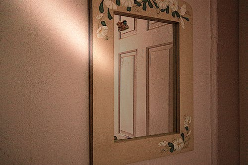 Free stock photo of door, mirror, vine pattern