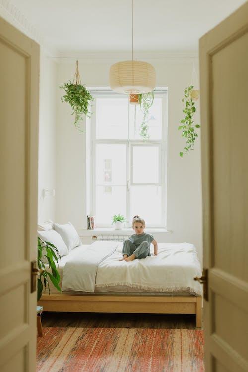 Gratis stockfoto met aanbiddelijk, bed, beklimmen