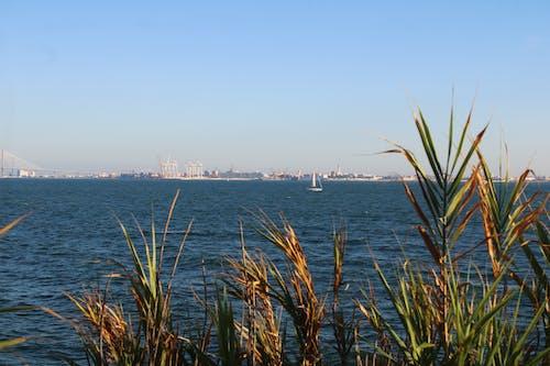 Fotos de stock gratuitas de bahia, cielo, mar, paisajes