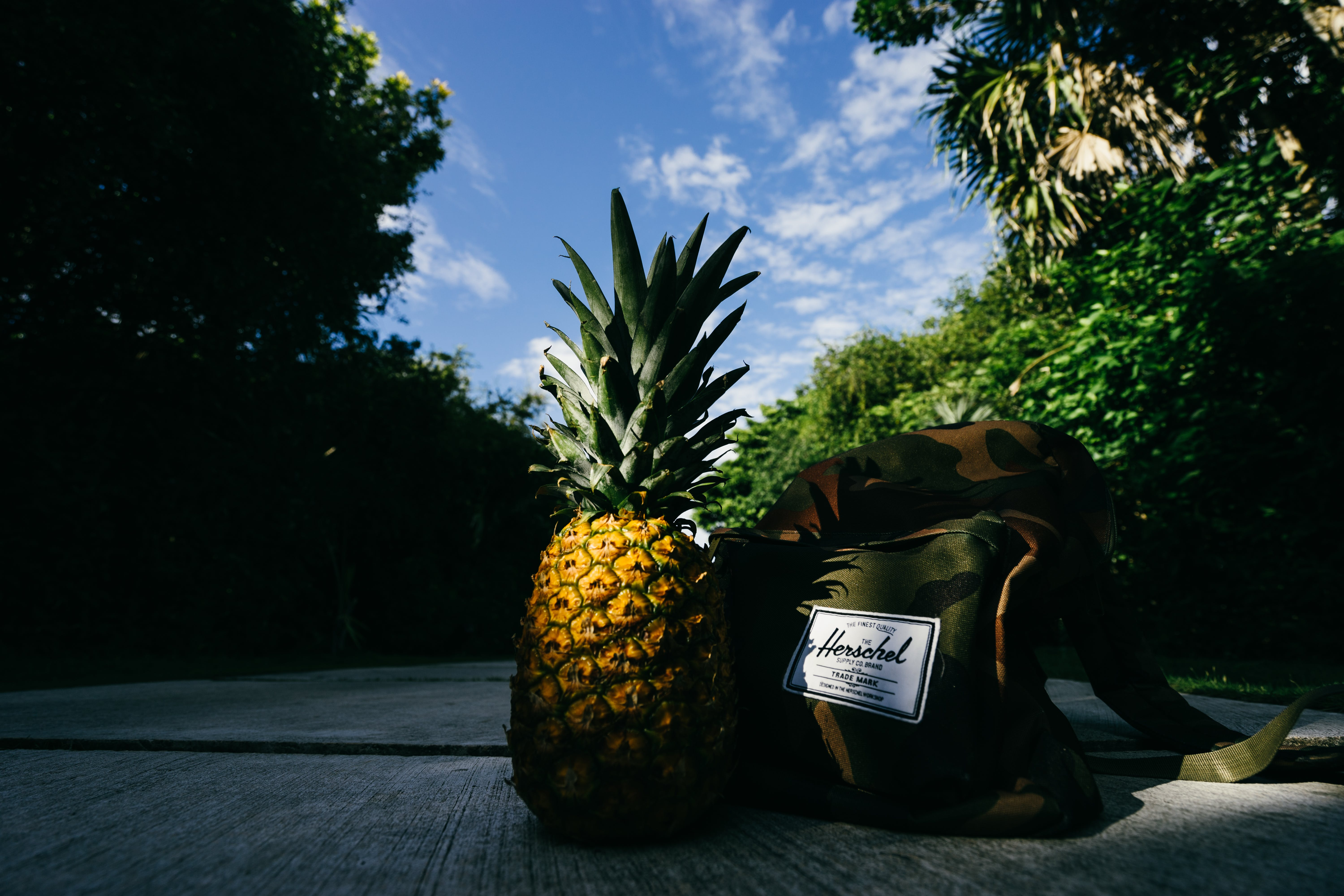 Pineapple Next to Herschel Backpack