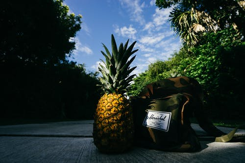 Foto stok gratis alam, buah, jalan, jalur