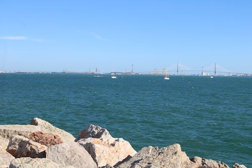 Fotos de stock gratuitas de bahia, mar, puente, veleros