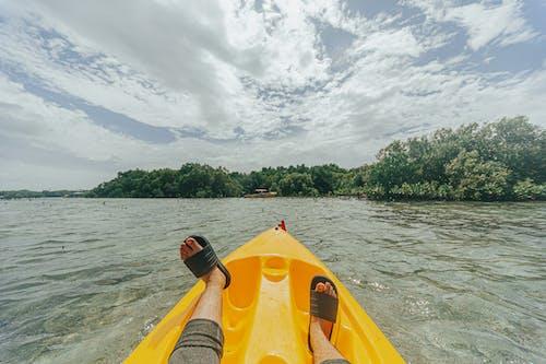 Free stock photo of kayak, mangrove, ocean, sea