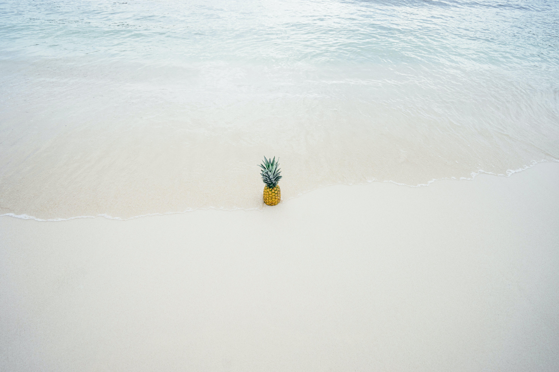 Gratis stockfoto met ananas, fruit, h2o, kust