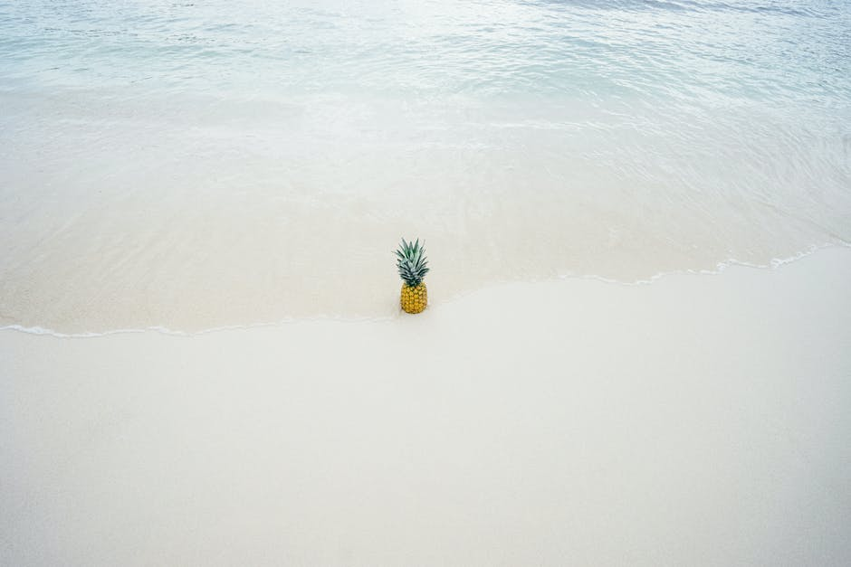 Pineapple in the middle of the seashore