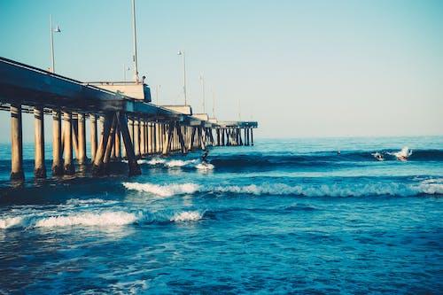 Fotobanka sbezplatnými fotkami na tému mólo, prístavné mólo, surfer, surfovanie