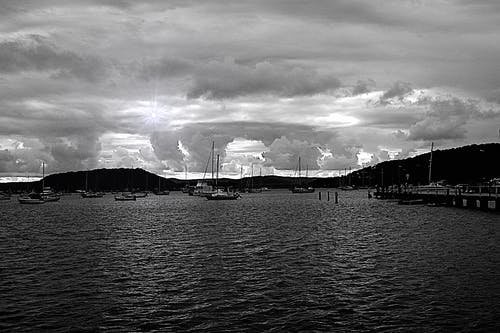 Free stock photo of bay, black and white, boats