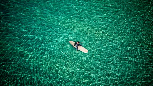 Person in Black and White Surfboard on Green Sea