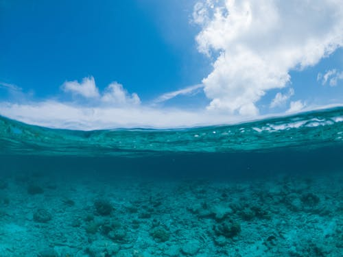 Picturesque blue transparent seawater rippling under cloudless bright sky on sunny weather in peaceful nature