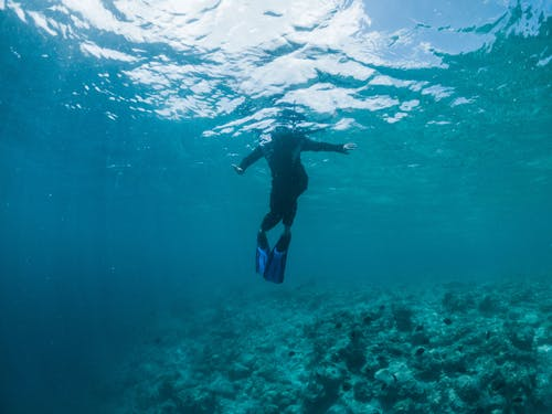 Underwater shot of anonymous snorkeler in flippers and wetsuit swimming in transparent blue seawater
