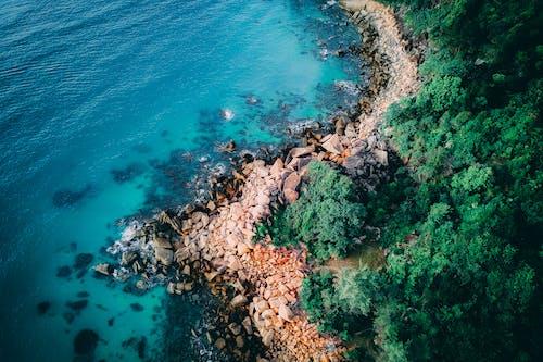 Gratis stockfoto met blauwgroen, boom, duiken, eiland