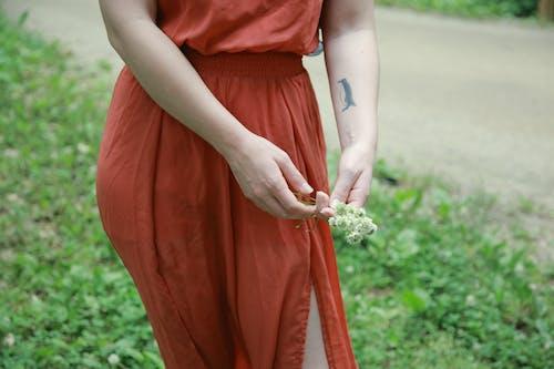 คลังภาพถ่ายฟรี ของ กลางแจ้ง, การแต่งงาน, ขน