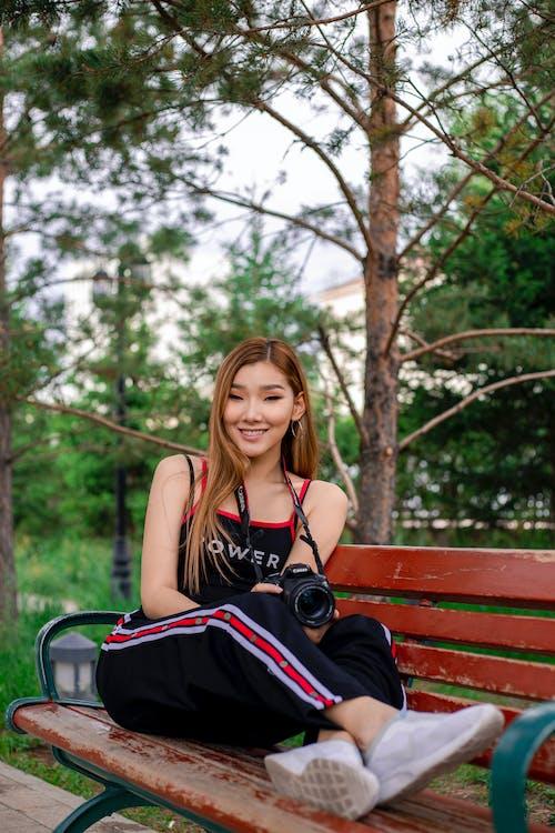 Fotos de stock gratuitas de al aire libre, árbol, banco, bonita