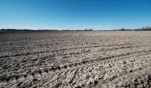 Free stock photo of farming, field, forã¥r, mark