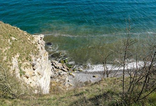 Free stock photo of cliffs, forã¥r, natur, østersøen