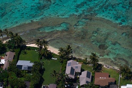 Gratis stockfoto met baai, boom, eiland, h2o